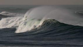 Wave spray Stock Image