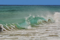 Wave spraying on the shore. Of the beach of sotavento in fuerteventura canary islands Royalty Free Stock Photo
