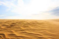 Wave sul deserto Fotografia Stock Libera da Diritti