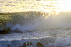 Wave sull'oceano Immagine Stock