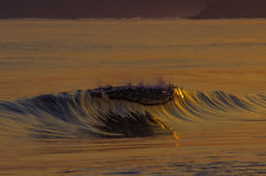 Wave at sunrise. Reflection of the sunrise in a glassy wave in Palomino, Colombia stock image