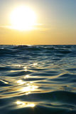 Wave on sunset. Royalty Free Stock Photos