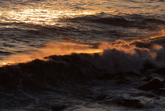 Wave at sunset Royalty Free Stock Photo
