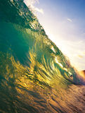 Wave Sunset. Beautiful ocean wave at sunset Royalty Free Stock Photos