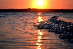 Wave sunset mozambiqe Royalty Free Stock Photos