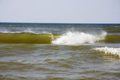 Wave surf Royalty Free Stock Photography