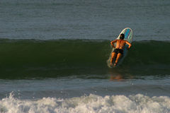 Wave and Surfer Girl royalty free stock photos