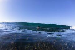 Wave Surfing Danger Royalty Free Stock Image