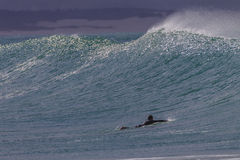 Wave Swell Surfer Paddle Stock Image