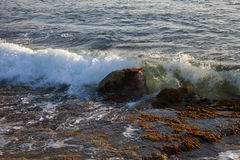 Wave is transformed into foam on a rocky beach. Selective focus Stock Images