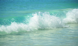 Wave in the tropices Royalty Free Stock Image