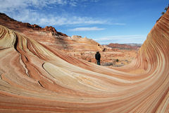The wave view. With man, coyote buttes north rhim, USA stock photography