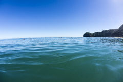 Wave Waiting, North Piha, New Zealand Royalty Free Stock Photo