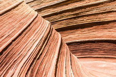 The Wave. Is an awesome vivid swirling petrified dune sandstone formation in Coyote Buttes North. It could be seen in Paria Canyon-Vermilion Cliffs Wilderness Stock Image