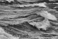 Wave in winter in the Nahuel Huapi Lake royalty free stock images
