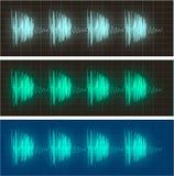 Waveform display of electric signals. Waveform display of electrical signals vector illustration