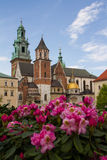 Wavel Castle and Cathedral of St. Wenceslas and Stanislaus Stock Image