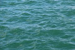 Wavelet on the sea Stock Image