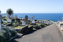 Free Waverley Cemetery In Sydney Stock Photos - 79332883