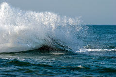 Waves. And a splash on water Royalty Free Stock Image