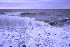 waves Royaltyfria Bilder