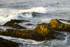 Waves. Strong waves crashing on rocks off the coast royalty free stock photography