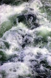 Waves. Water waves in a river in alaska Stock Images
