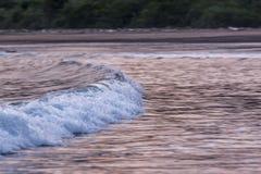 Free Waves And Sunset, Playa Tambor Costa Rica Royalty Free Stock Photos - 117016698