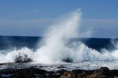 Waves, Atlantic ocean royalty free stock photo