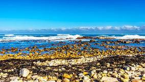 Waves of the Atlantic Ocean breaking on the rocky shores of Cape of Good Hope Stock Image