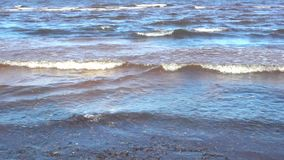 Waves on the Baltic Sea near the shore stock video