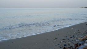 Waves on the beach, sunrise stock footage