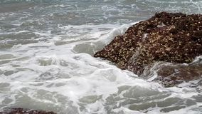 Waves break against big rock on the shore. Water splashes. Close up. India, GOA. Strong waves break against big rock on the shore. Water splashes. Close up stock footage