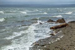 Waves On Shoreline. Waves break on the shoreline in Normandy Park, Washington on a windy day Royalty Free Stock Photography