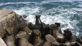 Sea Splashing on Wave Breakers stock video