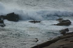 Waves breaking at Kangaroo Island, South Australia. Waves breaking on the rocks at Kangaroo Island, South Australia Royalty Free Stock Images