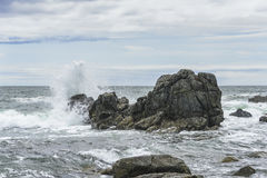 Waves breaking on the rocks . Stock Image