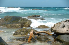 Waves breaking on rocky coast. Line with driftwood in foreground Royalty Free Stock Images