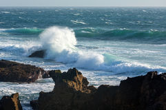 Waves breaking on rocky coast. Stock Images