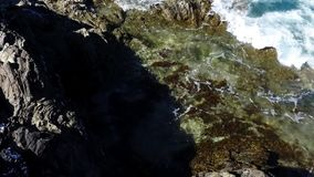 Waves breaking on seaweed covered rock with the tide coming in. stock video