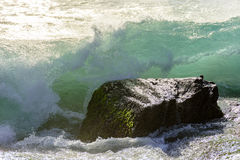 Waves breaking on the stone Royalty Free Stock Photography