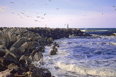Waves on the Breakwater. A man-made breakwater holds back the powerful Atlantic tides from eroding the Nova Scotia coastline stock images