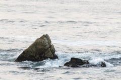 Waves On The California Coastline Royalty Free Stock Image