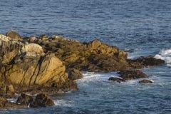 Waves On The California Coastline Stock Photography