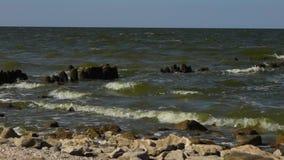 Waves on coastline of Azov sea stock video