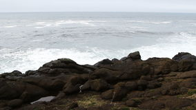 Waves Coming To Lava Rock Shore Depoe Bay Oregon stock video footage