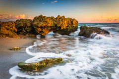 Waves and coral at sunrise in the Atlantic Ocean at Coral Cove P Stock Image