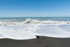 Waves crash onto South Pacific beach in New Zealand. Stock Photos
