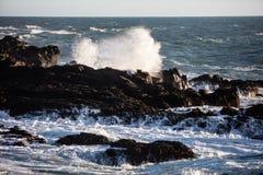 Waves Crashing Against California Coast Royalty Free Stock Image