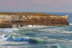 Waves Crashing Ashore at Wilder State Beach Royalty Free Stock Photo